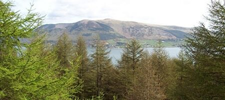 carlingford-view-of-mournes-9698185